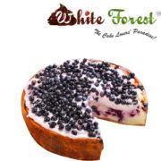 blueberry-product-image